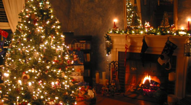 Top 5 Best Christmas Trees That You Can Find Online To Buy on Amazon