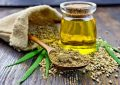 7 Health Benefits of Hemp Oil That You Should Know
