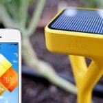 garden gadget