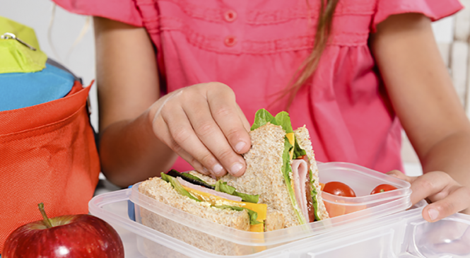 Food Safety Tips For School Lunchbox