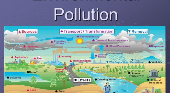 What Is Environmental Pollution