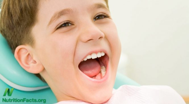 A Good Dentist – Important for your Dental Health