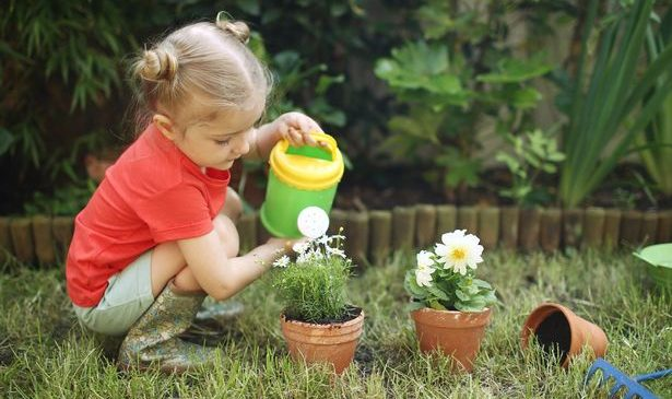 Home and garden changes to your lifestyle