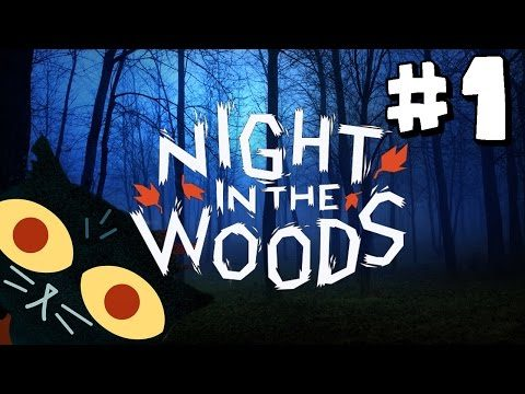 Night in the Woods -Video Games