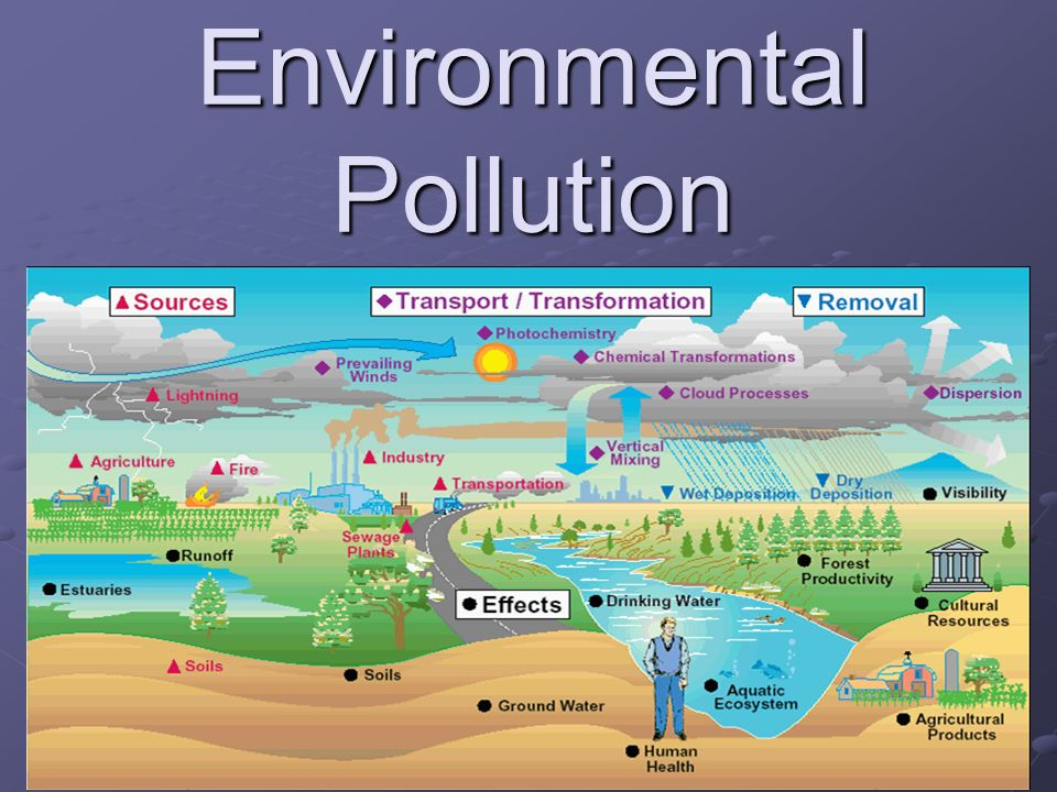 Water pollution is the contamination of