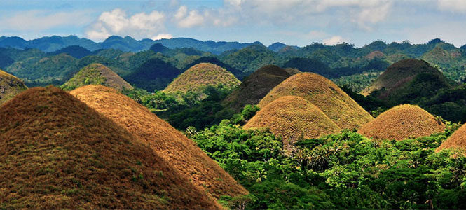 Things To Do In Bohol Island, Philippines