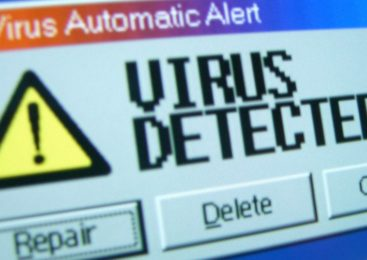 Some Basic Facts About Computer Virus