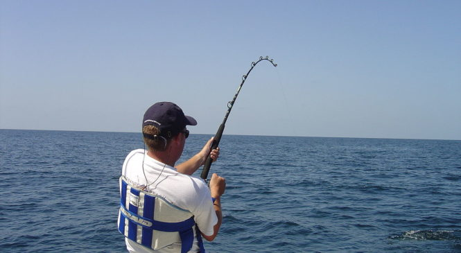 How to choose your first fishing rod