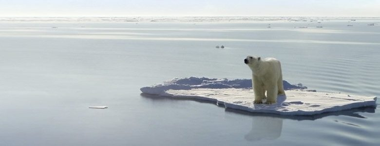 Environment – Perspectives on Global Warming