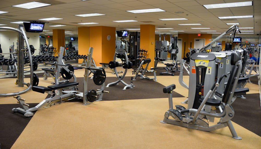 nice clean gym-local gym