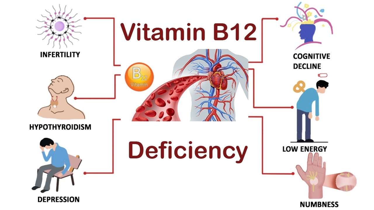 Image result for deficiency of b12 vitamin