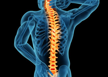 The Role of MRI(Magnetic Resonance Imaging) in Lower Back Pain