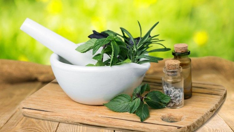 Herbal Therapy Folk Medicine : Stay Healthy with Traditional Herbalism