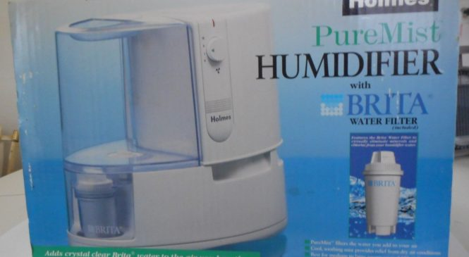 Cool mist or warm mist humidifier knowhow