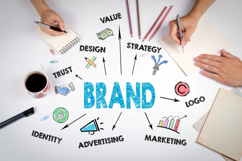 enhance your brand Know About the Dedicated Web Developers
