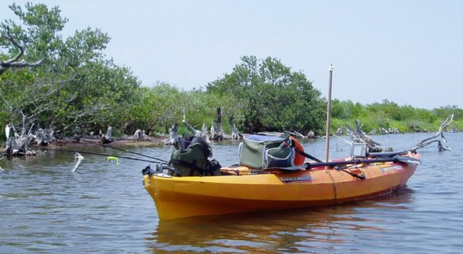 Kayaking in Matlacha, Florida and Indian River Lagoon