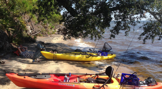 Kayaking in The Kawarthas and Black Creek in Florida's Panhandle
