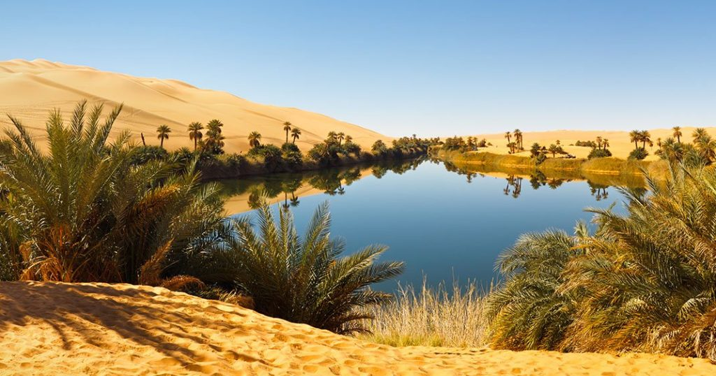 Full Of Life Things To Know Before Visiting The Sahara Desert