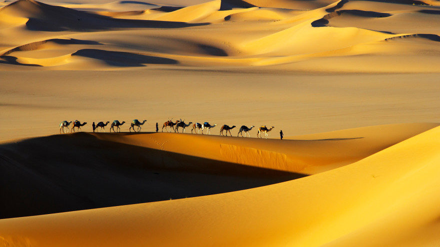 Full Week Things To Know Before Visiting The Sahara Desert