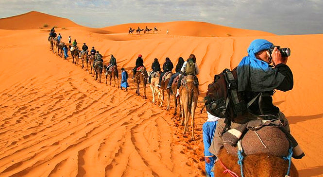 Things To Know Before Visiting The Sahara Desert