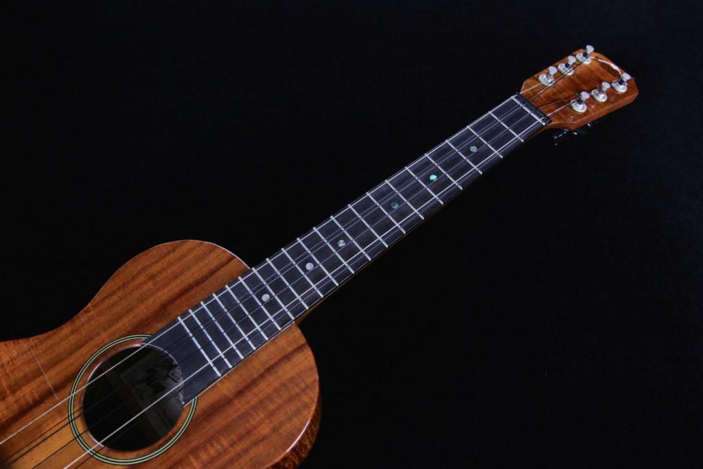6 string ukulele