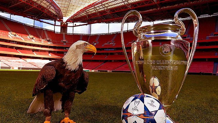 UEFA Eurocup