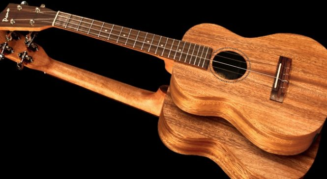 Common symbols found when reading pono tenor ukulele tabs