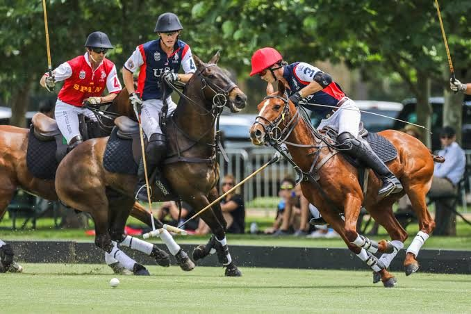 All You Need To Know About FIP 2020 World Polo Championship