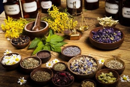 Guide to nutritional healing and whether herbal medicines good