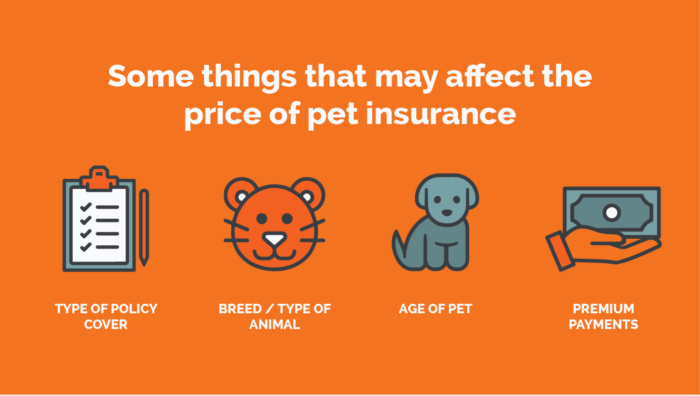 Pet Insurance type How To Choose A Pet Insurance Policy