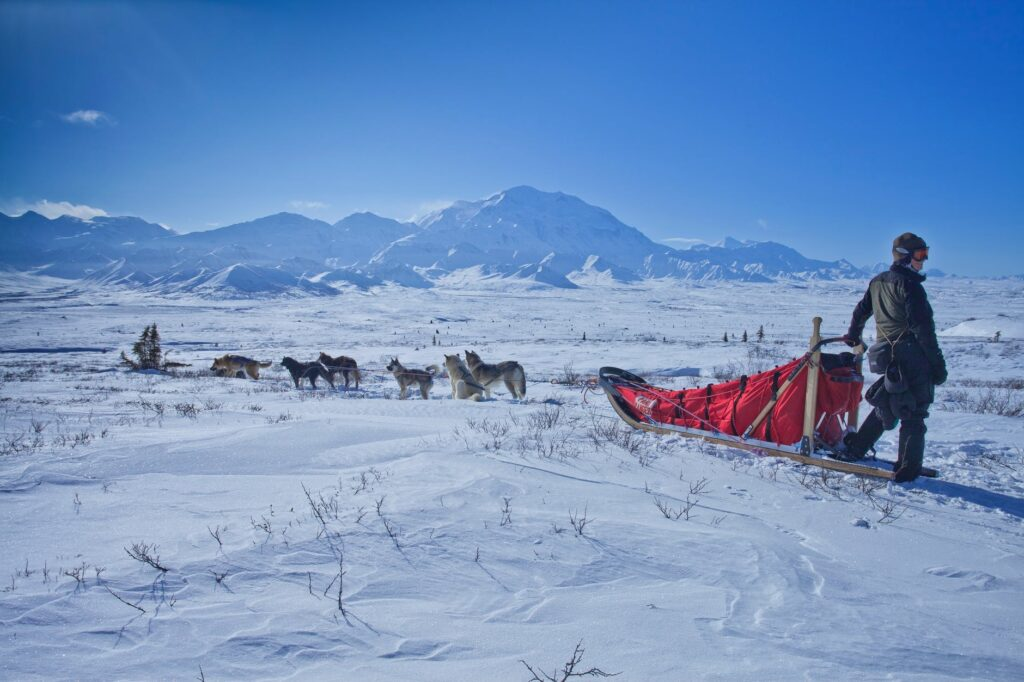 Dog sled adventure vacations